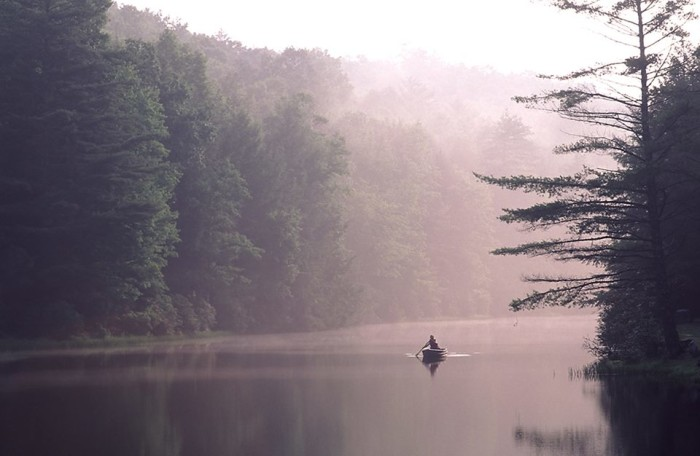 8. Our state parks and forests.