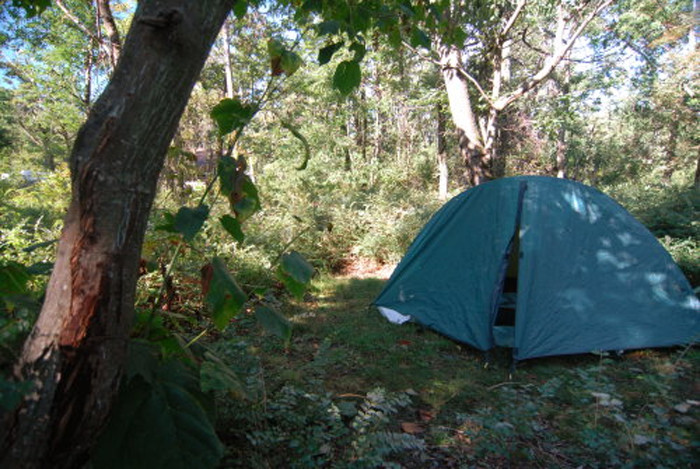 6. Spend a night tent camping in the South Carolina wilderness.