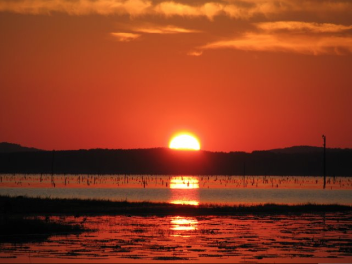 5. Toledo Bend State Park