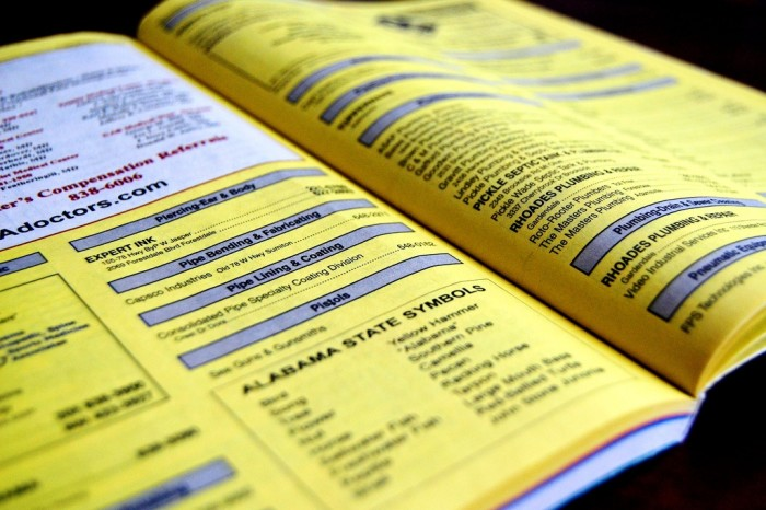 2. We consulted the phone book.