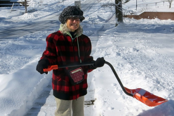 2. Is our snow shovel in working condition, or did it break last year?