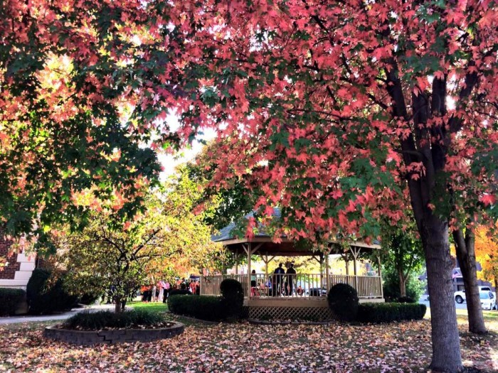 15. Leaves come in all sorts of colors in Effingham, Illinois.