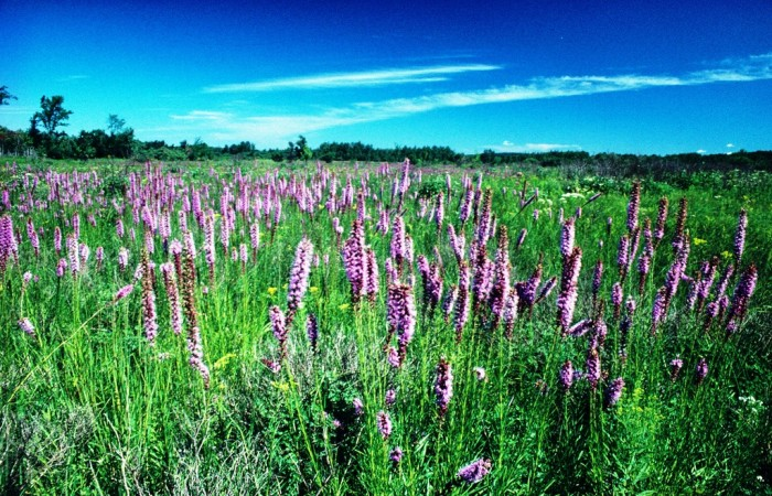 13. Kettle Moraine State Forest
