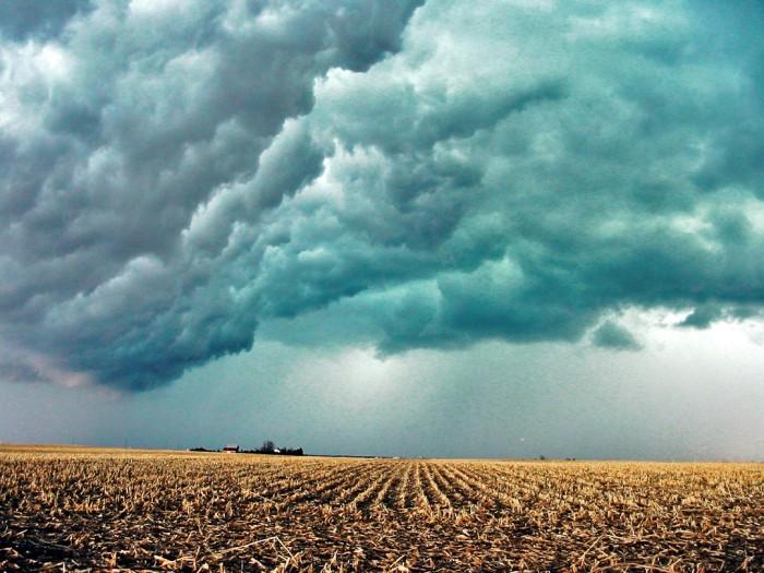 15. Beautiful Central Illinois Fields