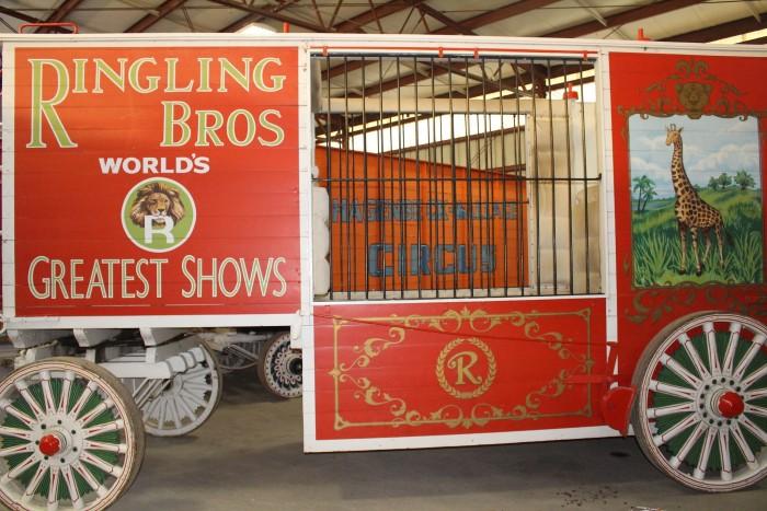 5. Circus World