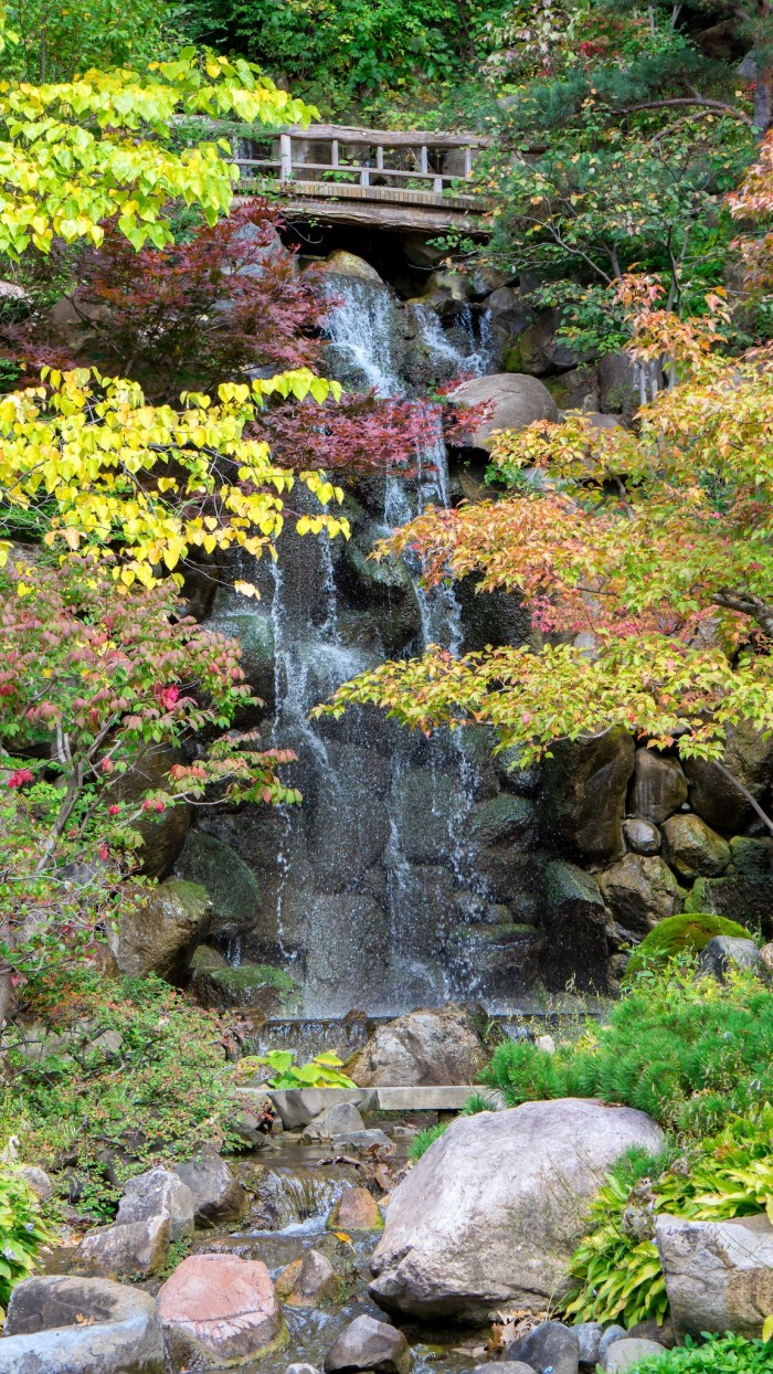 10. Anderson Japanese Gardens