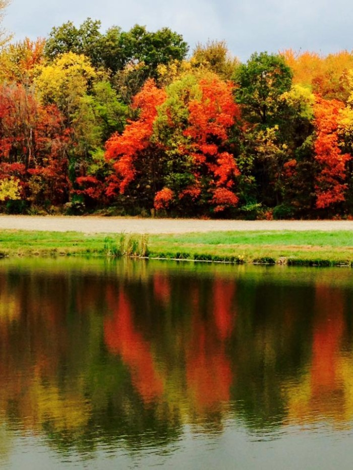 4. These fall colors in Claremont are among the brightest we've seen this season.