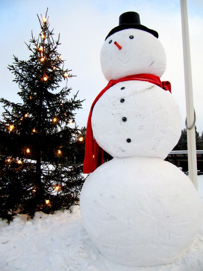 2. Building snowmen is impossible without snow. This is a great activity whether you have little kids or if you're a big kid.