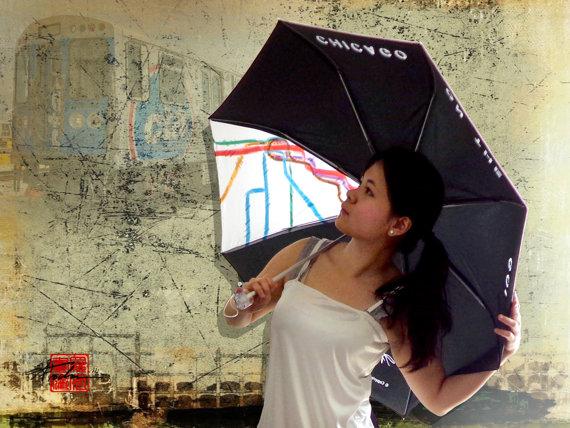 9. Illinois L Umbrella