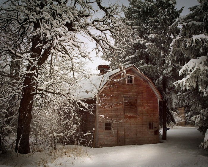 1. A fresh blanket of snow can surely make it immediately seem like Christmas.