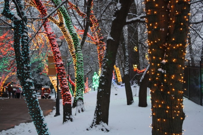 12. It makes holiday lights even more spectacular.