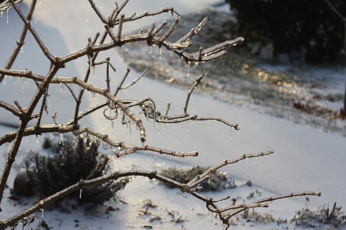 2) The Nashville Ice Storm