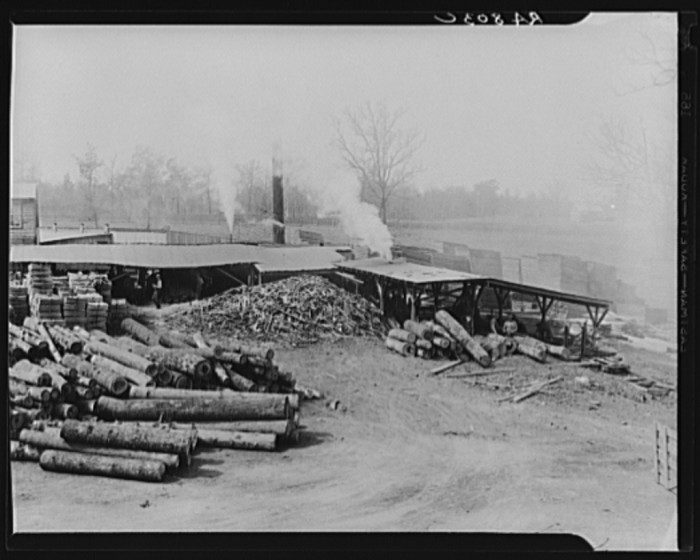 10) An old saw mill out in the boonies