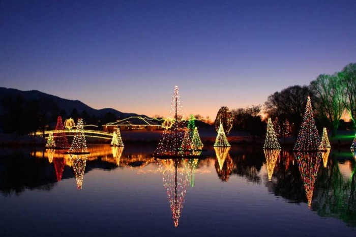 Willard Bay Christmas Lights