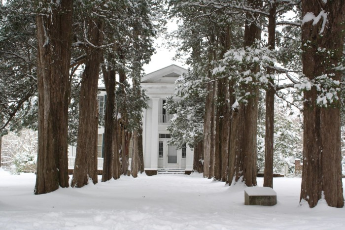 10. A spectacular shot of a snow-covered Rowan Oak.