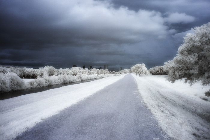 7) This peaceful, frosty road is in the heart of the city. Unbelievable. (Fort Worth)