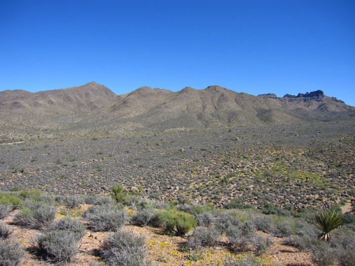 5. A robbery at Canyon Station may mean a mound of gold coins may sit near Kingman.