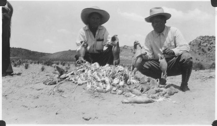 7. These men apparently had jobs doing rodent control somewhere in northern Arizona. This photo shows a summer day's work in 1934.