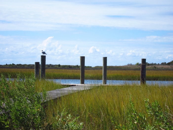 1) Visit Smith Island.