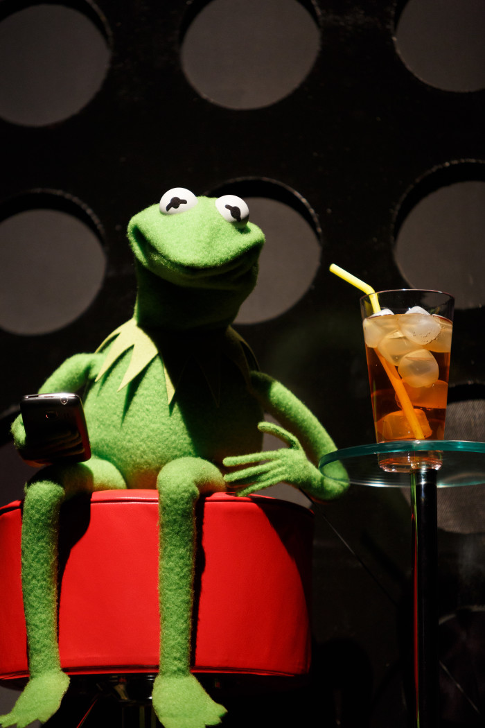 10. Kermit the Frog wouldn't exist if it weren't for Mississippi.