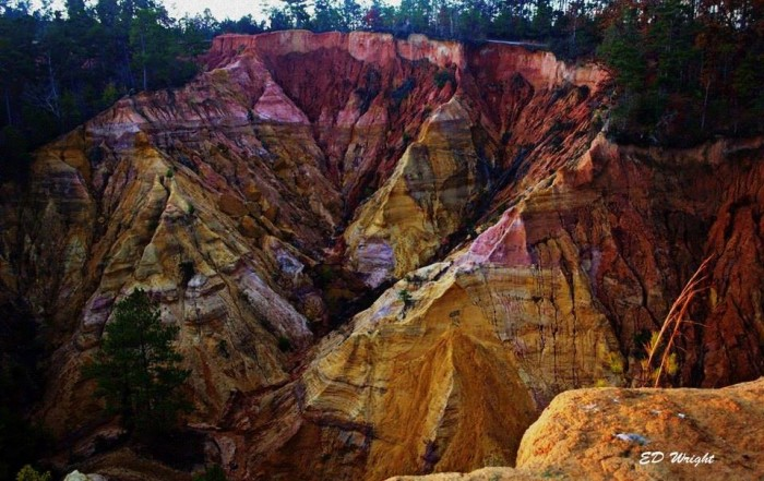 10. One of the state's best kept secrets, Red Bluff (a.k.a. the Little Grand Canyon) is an amazing sight.
