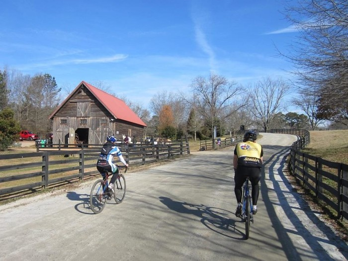 15. Go for a bike ride with Georgia Bicycle Adventures