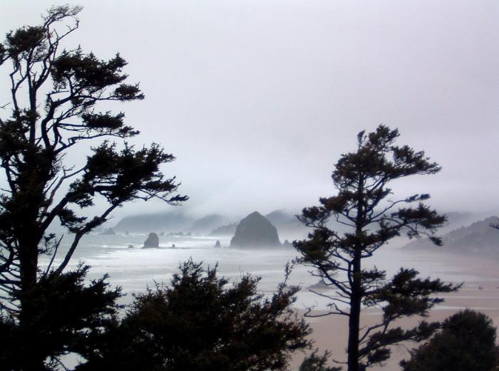 10. The coast.