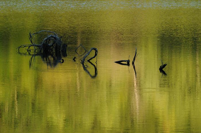11.Lake Townsend.