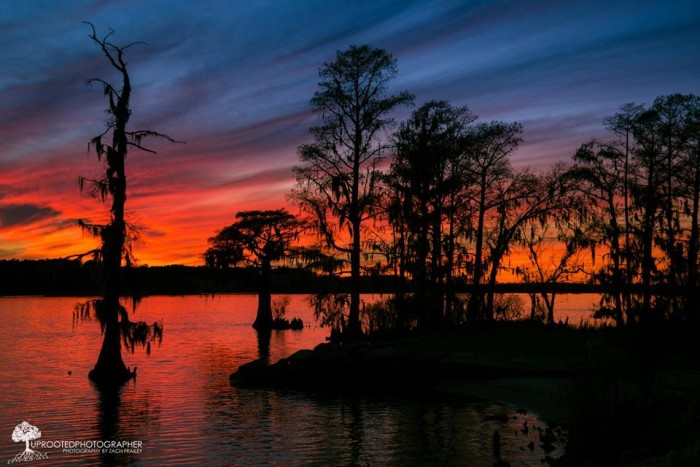 7. Night takes over but colors are still vibrant on the coast. Photo by Zach Frailey: The Uprooted Photographer.