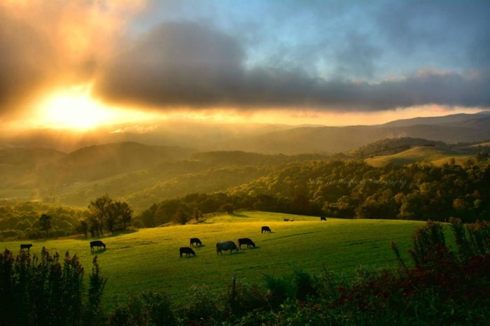 11. A peaceful new day starts in Banner Elk by Sallie J. Woodring Photography.