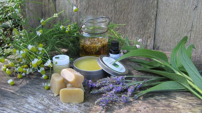 10. Learn how to make herbal medicine at the Herb Crib - 2998 Track Rock Church Rd Blairsville, GA 30512