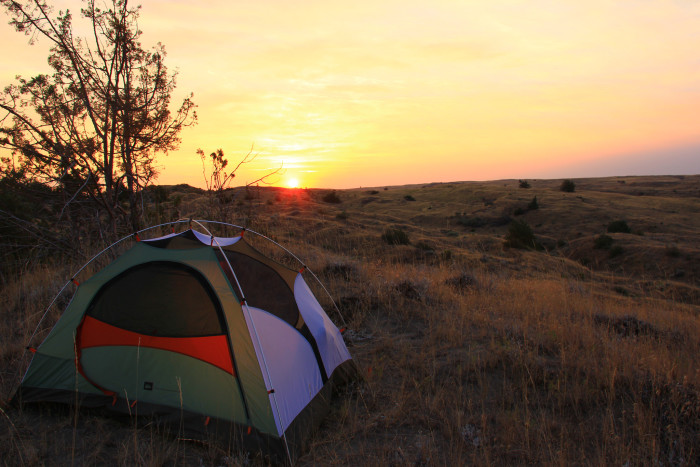 2. Go camping.