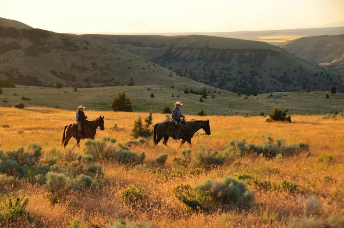 3. Wilson Ranches Retreat Bed and Breakfast