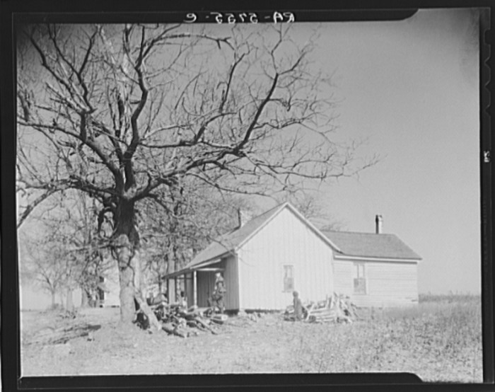 12) A tiny white house in Johnson - 1936