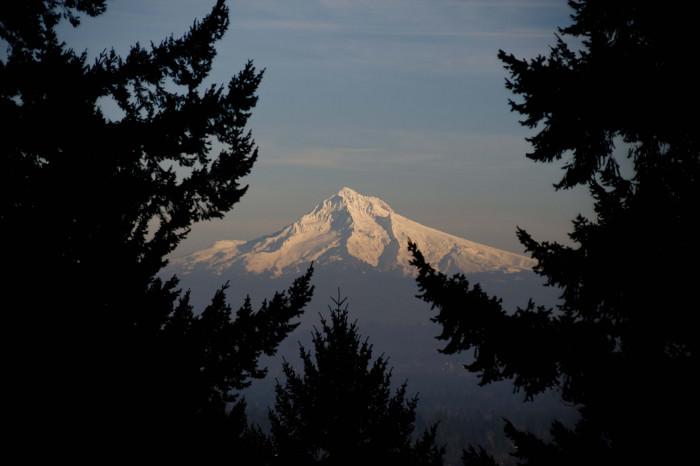 9. Appreciated a mountain view.