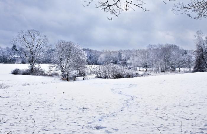14. Another incredible shot of frozen Boxborough.