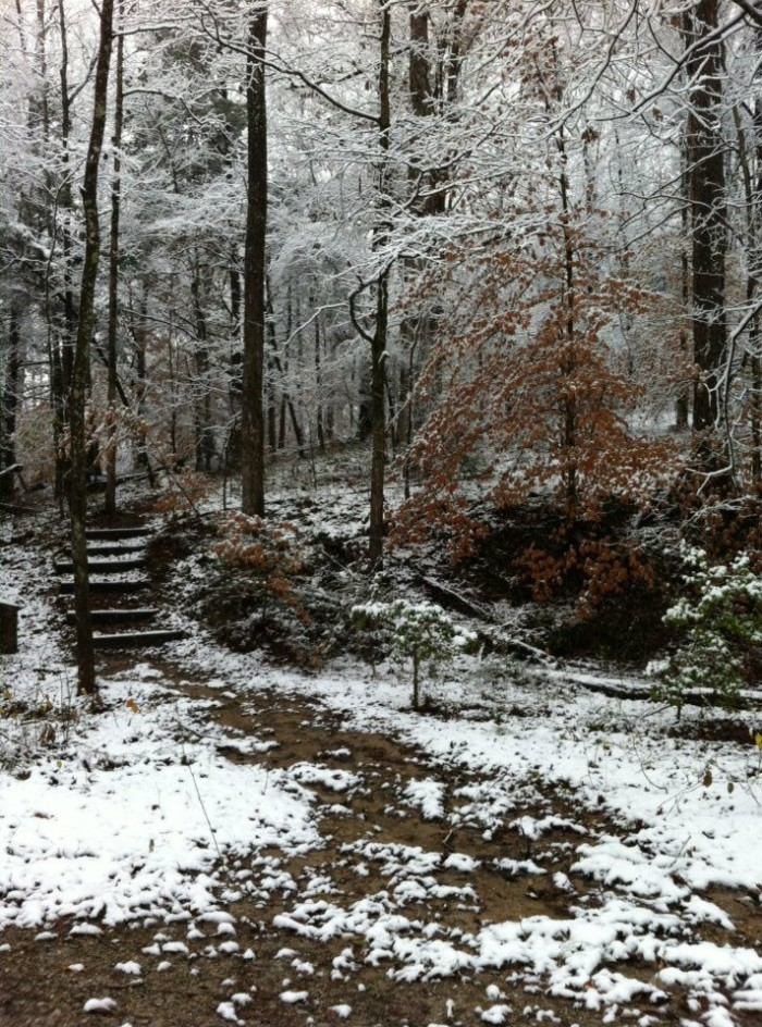12. Just a little snow completely transforms Holly Springs' Strawberry Plains Audubon Center into a scene fit for a Christmas card.
