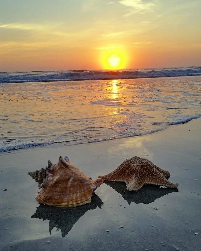 20. Joan Sherry-Cute sent us this shot of a November sunrise in Florida.