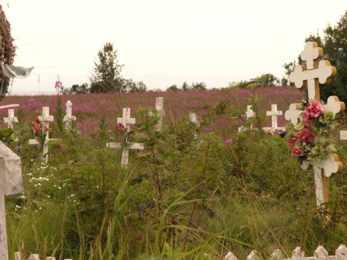 3) Arthur Johnson's grave at the Kenai cemetery