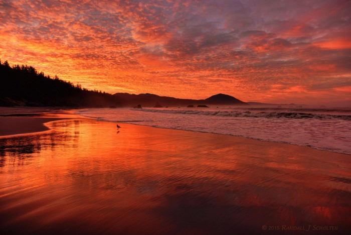 15. Sunrise in Port Orford, by Randy Scholten.