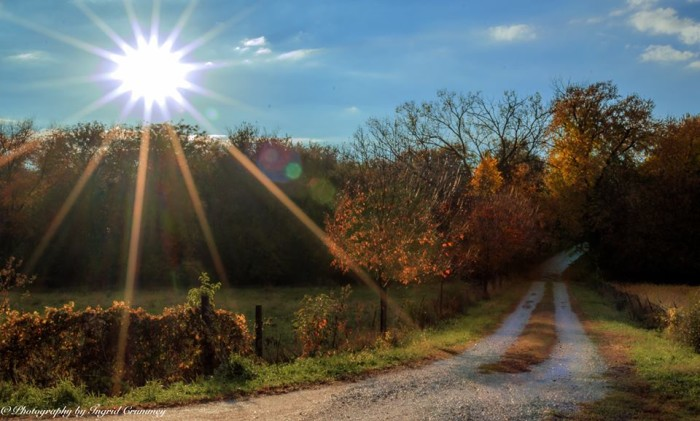 10. Photography by Ingrid Crummey shared this sunny and bright photo of  a back road in rural Nebraska.
