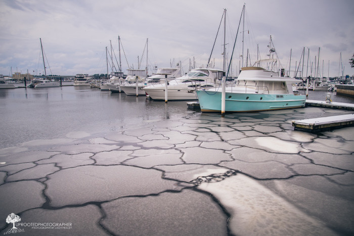 12. Patterns in the ice at the marina.