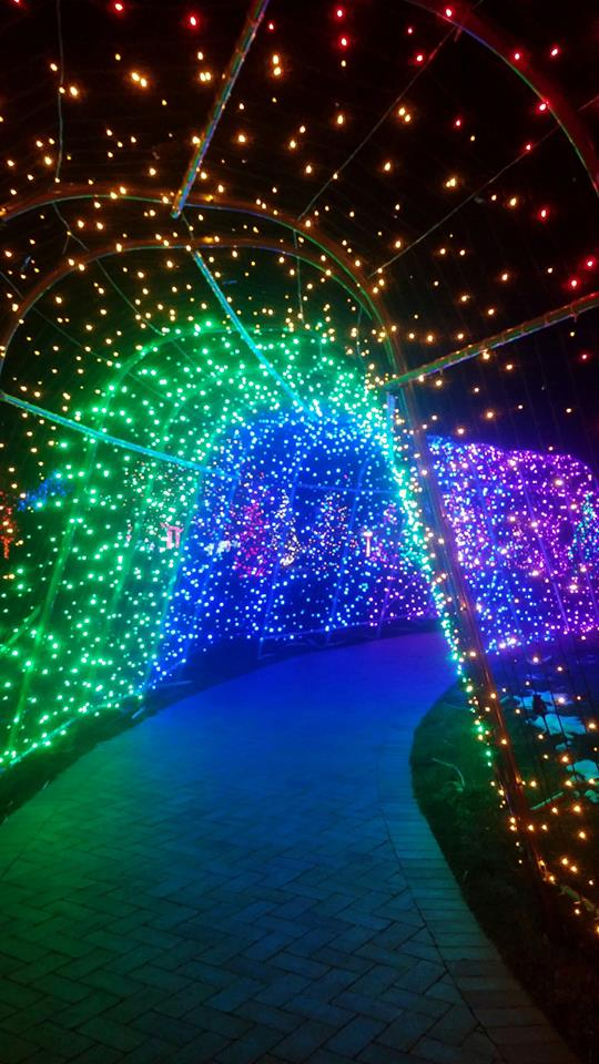 11 Of The Best Colorado Christmas Light Displays