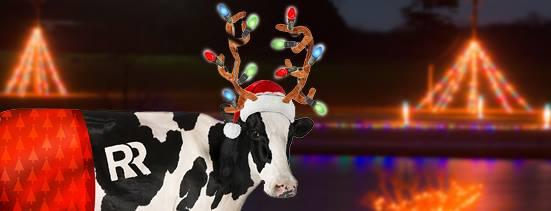 6. The Rock, GA – Drive-Thru Christmas Lights at The Rock Ranch