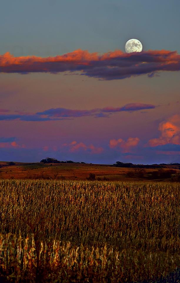 12. Derrill Grabenstein captured this absolutely magical shot of rural Nebraska north of Valparaiso.