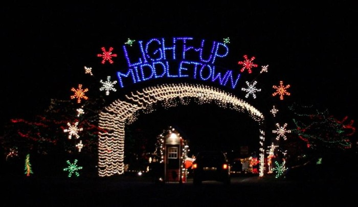 5. Drive-through light displays pop up ALL over the state.