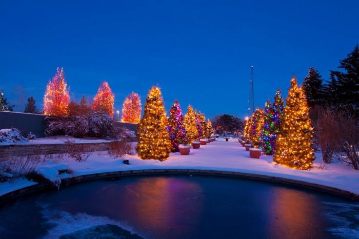 Best Christmas Light Display