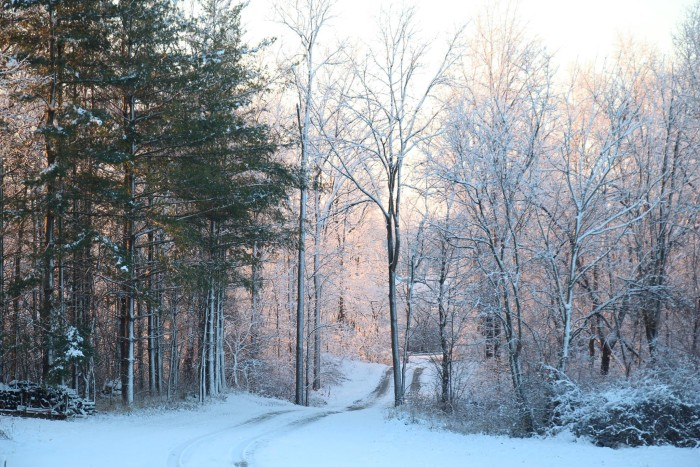 15. Cara Hines Conwell snapped a beautiful shot of a snow covered Huntington. Pretty!