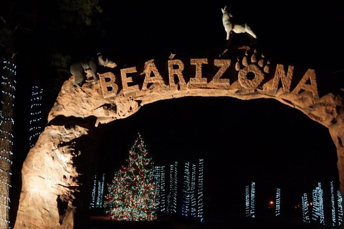 8. Wild Wonderland (Bearizona, Williams)