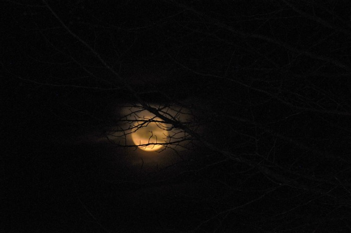 5. Steve Smith shared a spooky shot of the moon with us! Do you love this picture as much as I do?